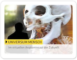 ausstellungen_deepspace_universummensch_NEU_de