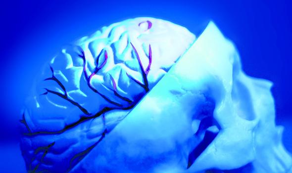 Deep Space LIVE: Dem Gehirn beim Arbeiten zusehen