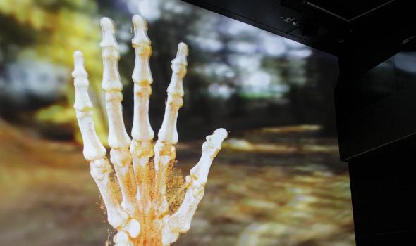 Deep Space LIVE: Wunderwerkzeug Hand – vom Angreifen zum Begreifen